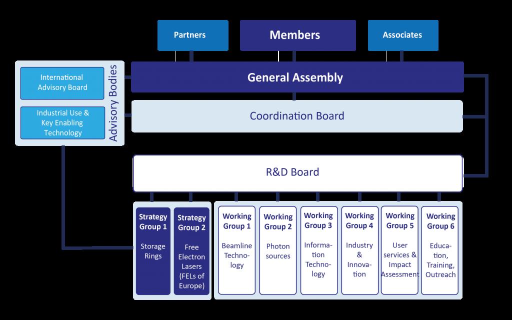 LEAPS Organisational Chart November 2020
